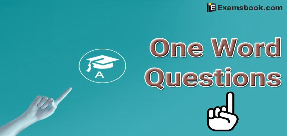 4jIWOne-Word-Questions.webp