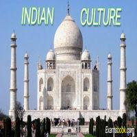 WPeTIndian-Culture.webp